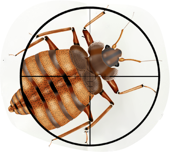 Free pest inspection